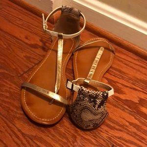 Express Shoes - Color block T strap Sandal